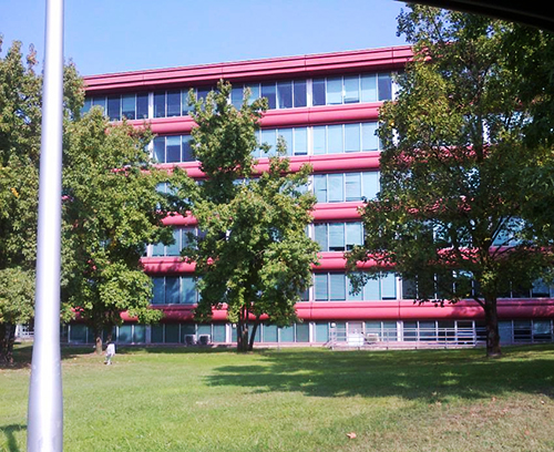 One of the many buildings on the ENI Petrol campus, now with clean blinds!